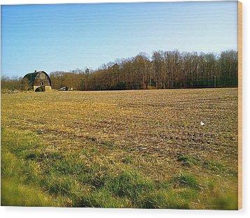 Farm Field With Old Barn Wood Print