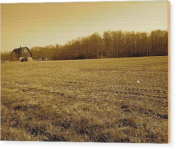 Wood Print featuring the photograph Farm Field With Old Barn In Sepia by Amazing Photographs AKA Christian Wilson
