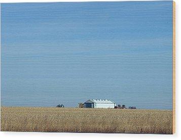 Farm House Kansas Wood Print