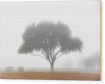 Farm On A Foggy Morning Wood Print