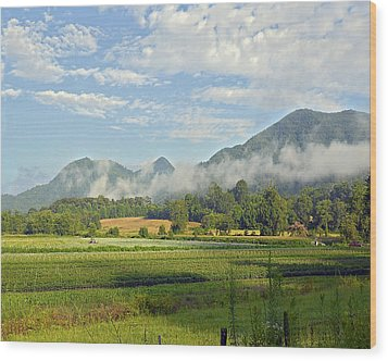 Farm In The Valley Wood Print by Susan Leggett