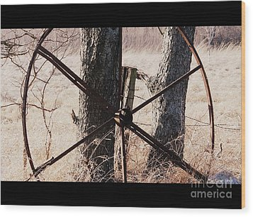 Wood Print featuring the photograph Farm Life by Christie Minalga
