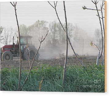 Wood Print featuring the photograph Farm Life  by Michael Krek