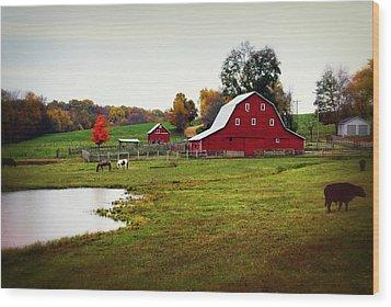 Farm Perfect Wood Print by Marty Koch