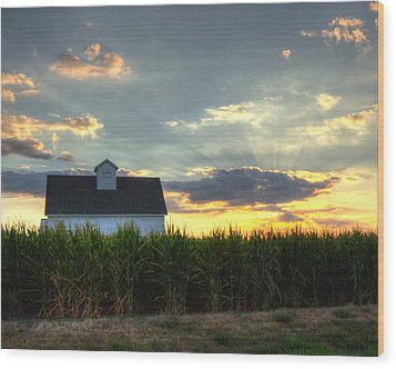Farm-scape Wood Print by Coby Cooper