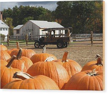 Farm Stand Pumpkins Wood Print by Barbara McDevitt