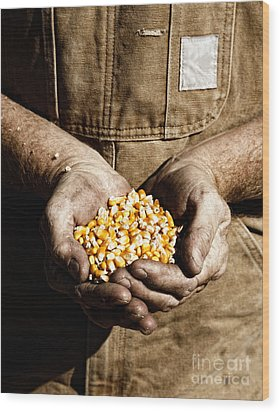 Wood Print featuring the photograph Farmer's Hands With Seed Corn by Lincoln Rogers