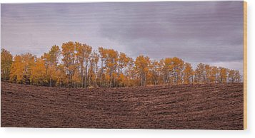 Farmer's Preperation Wood Print