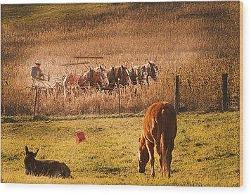 Farming  Modes Of Transportation Wood Print by Randall Branham