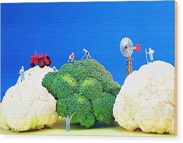 Farming On Broccoli And Cauliflower Wood Print by Paul Ge