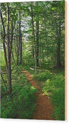 Farmington River Walk No. 1 Wood Print