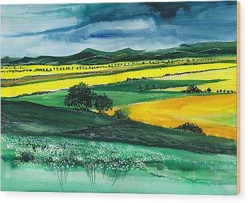 Farmland 1 Wood Print by Anil Nene