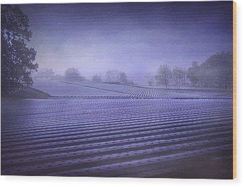 Farmland 2 Wood Print