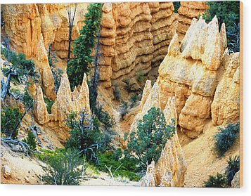 Faryland Canyon Bryce Canyon National Monument Wood Print