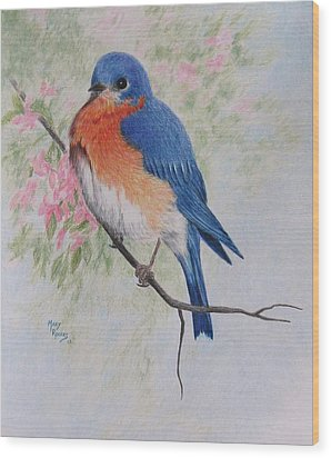 Fat And Fluffy Bluebird Wood Print by Mary Rogers