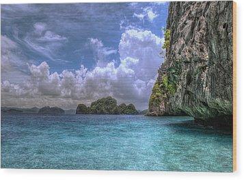 Favorite Color Blue Wood Print by John Swartz