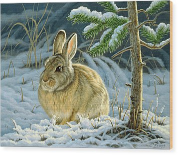 Favorite Place - Bunny Wood Print by Paul Krapf
