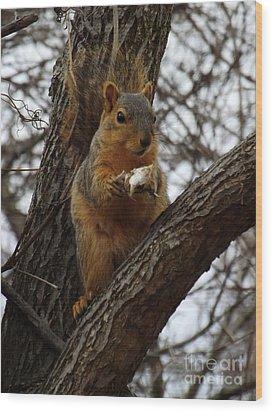 Feasting On Fish Fox Squirrel Wood Print by Sara  Raber