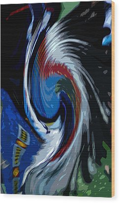 Feather Whirl Wood Print by Randy Pollard