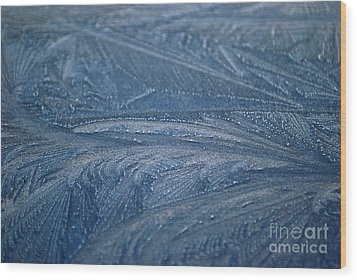 Feathered Blue Wood Print