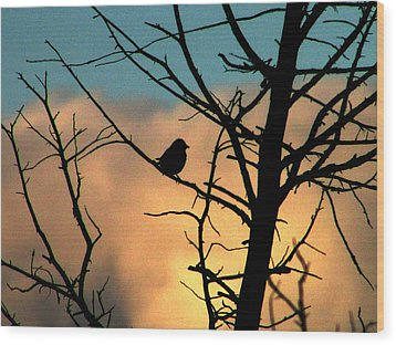 Feathered Silhouette Wood Print