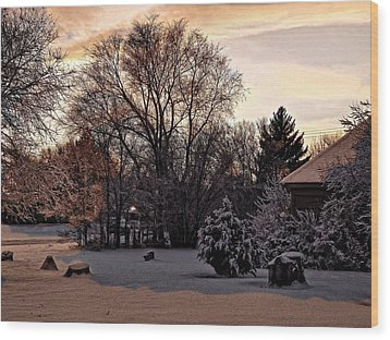 Wood Print featuring the digital art February Evening Light by Aliceann Carlton