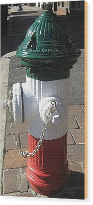 Federal Hill Fire Hydrant Wood Print by Bruce Carpenter