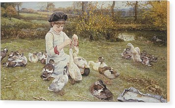 Feeding Ducks Wood Print by Edward Killingworth Johnson