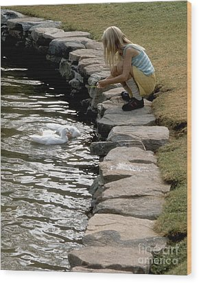 Feeding The Ducks Wood Print by ELDavis Photography