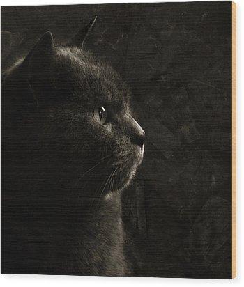 Feline Perfection Wood Print by Laura Melis