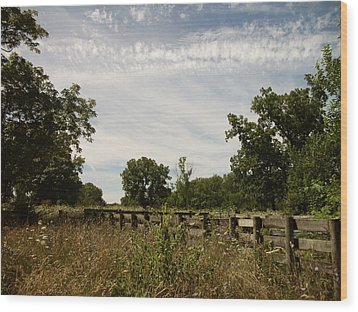 Fence 2 Wood Print by Cynthia Lassiter
