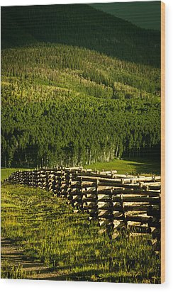 Fence And Shadow Wood Print