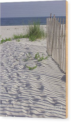 Wood Print featuring the photograph Fence And Shadow by Jeanne Forsythe