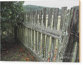Fence At The Farm Wood Print by Graham Foulkes