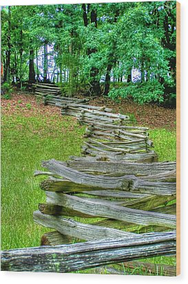 Fence Line Wood Print by Dan Stone