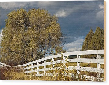Fence Wood Print by Michele Wright