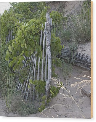 Fence N Sand Wood Print by Tara Lynn
