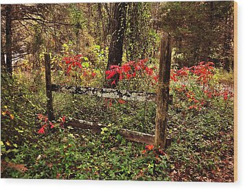 Fence On The Buffalo Wood Print by Marty Koch