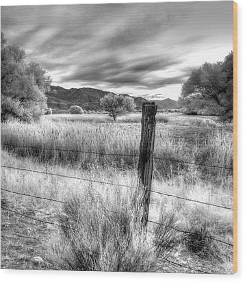 Fence Post In The Meadow Wood Print