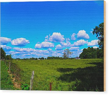 Fence Row And Clouds Wood Print by Nick Kirby