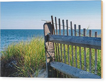 Wood Print featuring the photograph Fence With A Great View by Mike Ste Marie