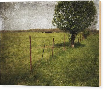 Fence With Tree Wood Print by Cynthia Lassiter