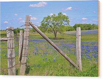 Fenced-in Beauty Wood Print by Lynn Bauer