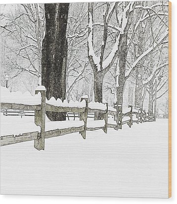 Fenced In Forest Wood Print by John Stephens