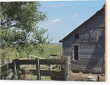 Fenced In Wood Print by Renie Rutten