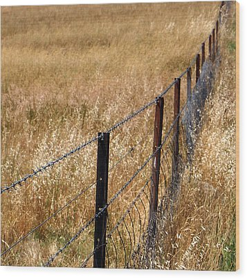 Fenced Off Wood Print by Kaleidoscopik Photography