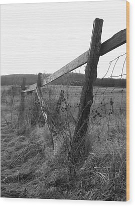 Fences Black And White I Wood Print