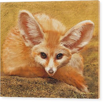 Fennec Fox Wood Print by Jane Schnetlage