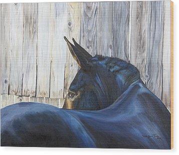 Fenway Bartholomule Wood Print by Shaila Yovan Tenorio
