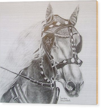 Fer A Cheval Wood Print